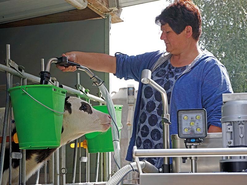 MilchMobil füttert Kälber